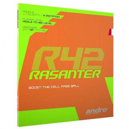 andro Rasanter R42 rotation